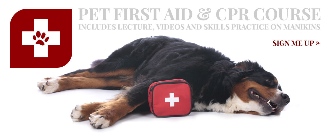 Pet First Aid ROTATOR