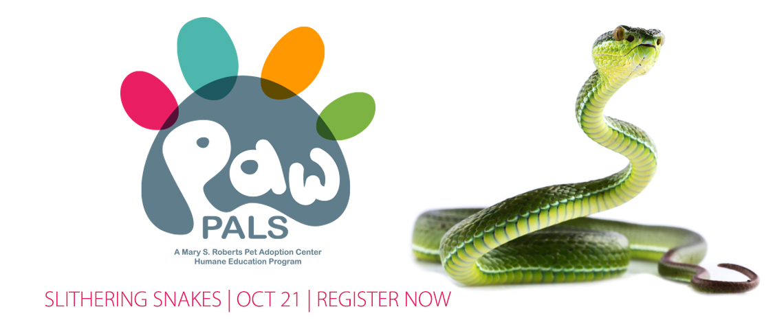 PAW PALS SNAKES