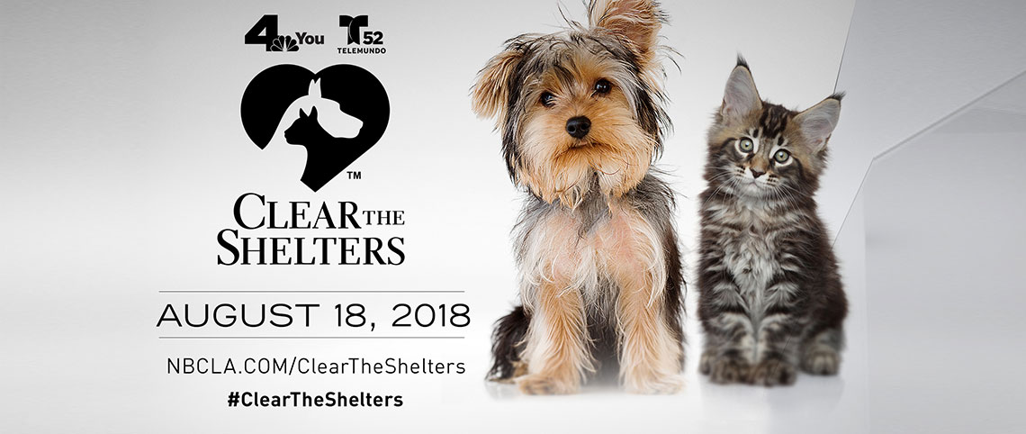 Clear The Shelter 2018